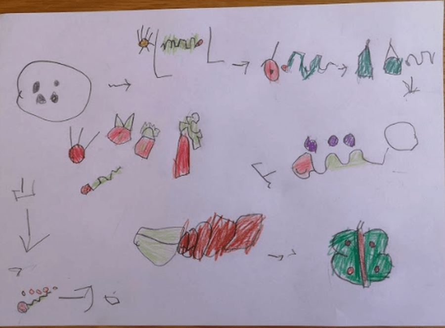 A fabulous story map by William!