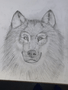 Y6 wolf 2.png