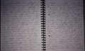 Zeynep write.PNG