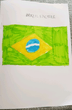 Hollie's Brazil 1.PNG
