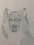 Y6 wolf.png