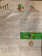 Rory's Brazil fact file.PNG