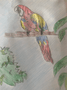 Lucy's parrot.png