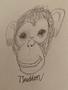 Tasja monkey.png