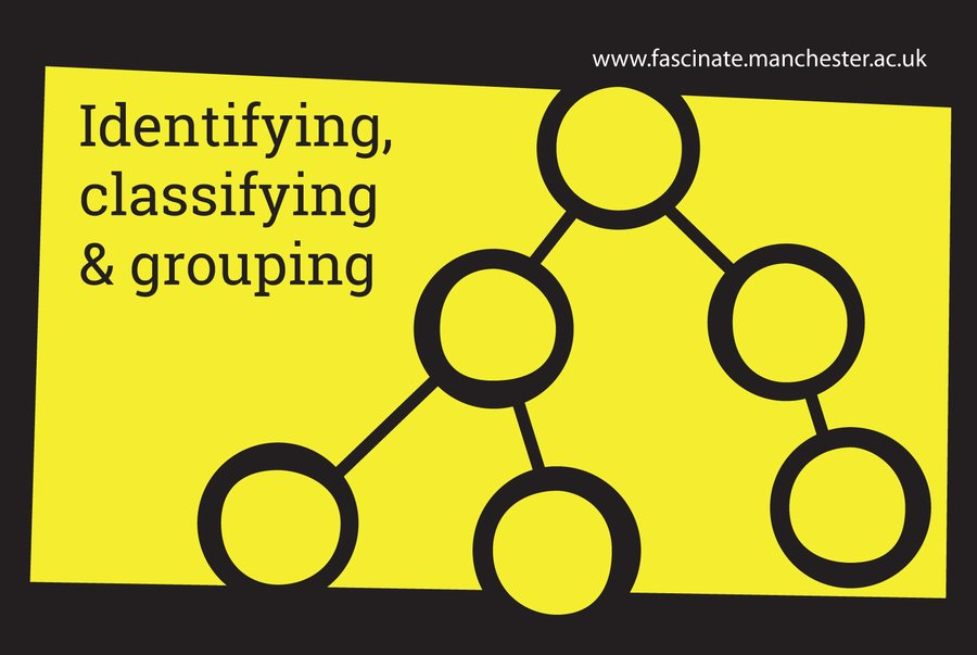 Identifying, classifying & grouping
