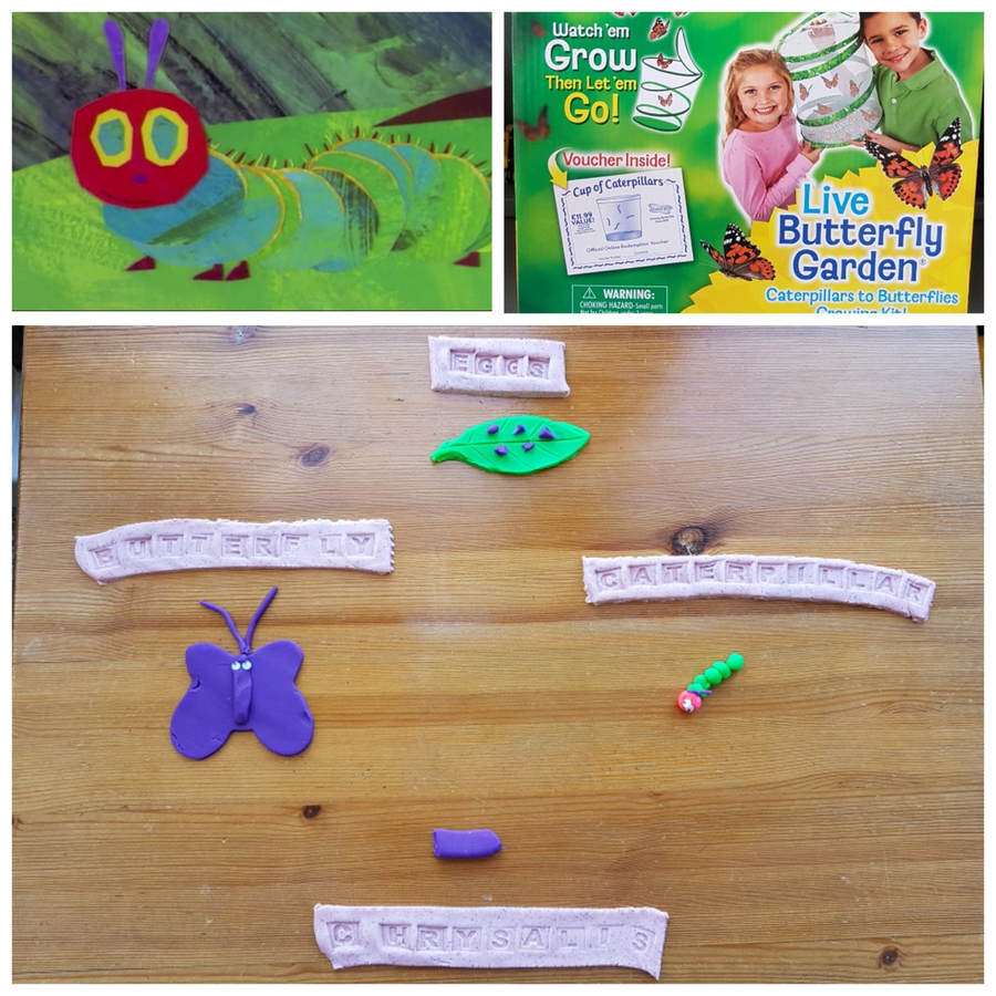 George has done some lovely work around the story of the hungry caterpillar