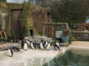school visit zoo.jpg