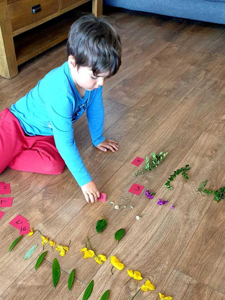 We went on a walk and collected lots of leaves and flowers. Jack grouped them together and added up the total of each thing.