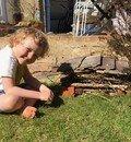 A super 'Bug House' in the garden!