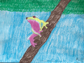 Kizzy's frog.png