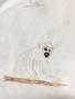 Tori's monkey.png