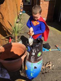 Dexter planting.jpg
