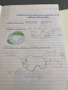 English Debating Curriculum - endangered animals (6 May 2020 at 3_48 pm).png