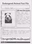 Panda_Fact_File.png