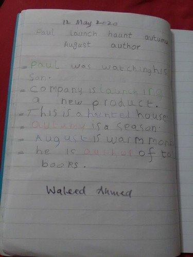 Waleed 2.jpg