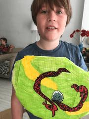 Fin's shield