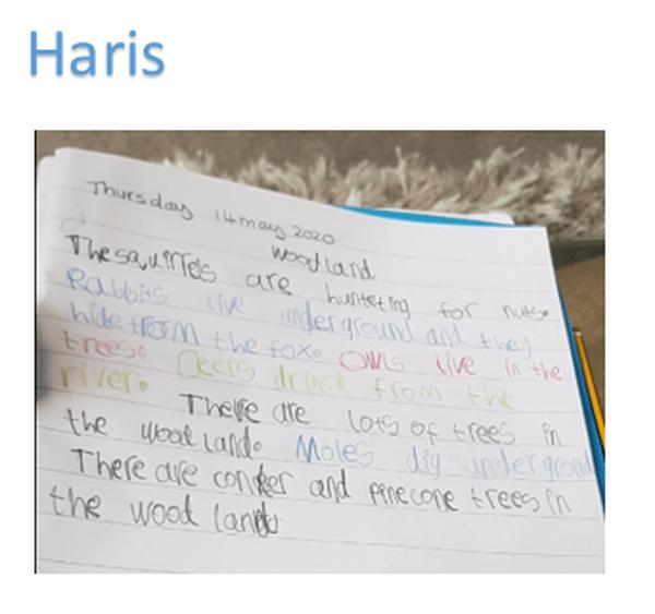 Haris 2.PNG