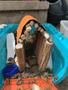 snailhouse.png