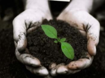 Soil 2.png