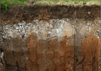 Soil 3.png