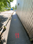 Y6 pathway.png
