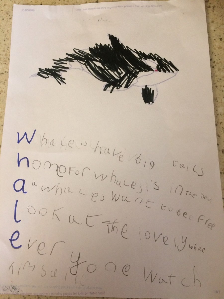 Amber B acrostic poem about whales