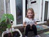 Emily sunflower.jpg