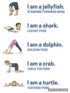 OceanYoga.png