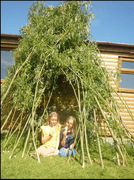 Willow den building by Annie & Claudia.