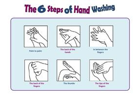 Wash hands with soap for at least 2o seconds.