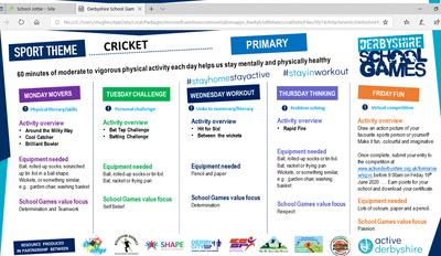 cricket 1.png