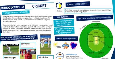 cricket.png