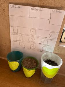 soil BN.png