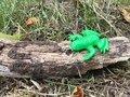 frog homes (61).JPG