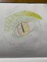 ART (12 Jun 2020 at 15_03).png