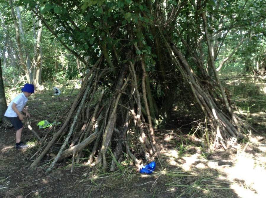 Y1 Children have been playing forest schools in the woods!
