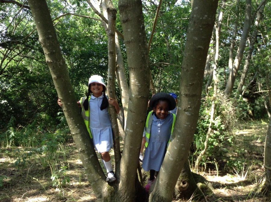 Y1 Children playing peekaboo in the woods!