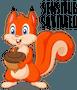 Sensible Squirrel_1.png