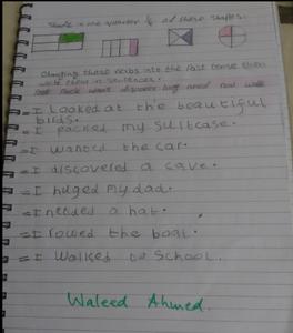 Waleed 4.PNG