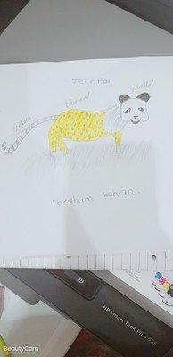 By Ibrahim