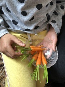 Tayiba watered and picked the carrots in her garden...