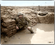colour sergeant william macgregor Lancs Fusiliers Battle of Messines.png