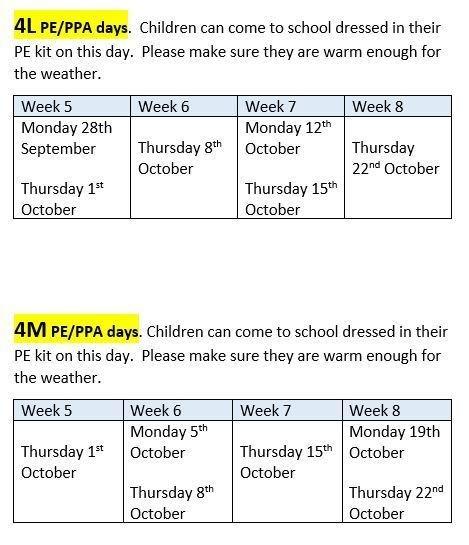 PE Timetable Term 1