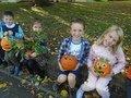 pumpkins (3).JPG