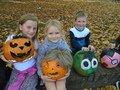 pumpkins (5).JPG