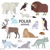 polar animals.jpg