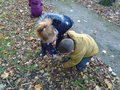 Early Years children really enjoyed exploring in the woods.