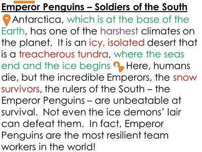 Penguins 1A.JPG