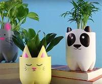 plant pot.jpg
