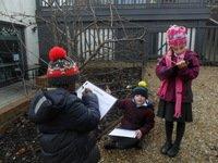 Bernie, Jacob and Anastasiaobservingplantsand trees in the school garden.
